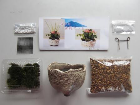 富士の盆栽セット(白)