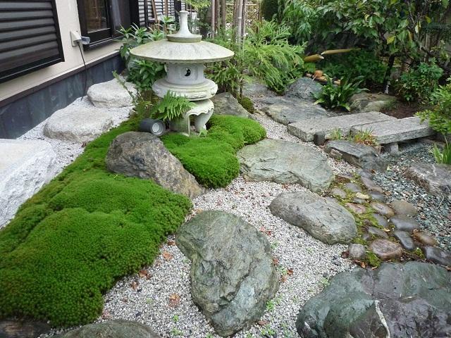 杉苔植栽風景