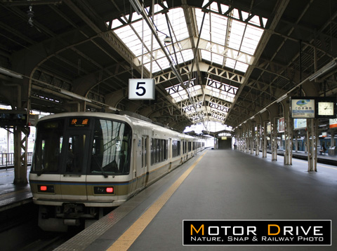 20110209t1.jpg
