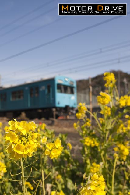 20110213hynh.jpg