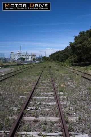 2011suiken.jpg