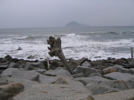 3677伊良湖海岸