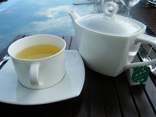 シンスお茶