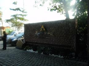 ana1.jpg