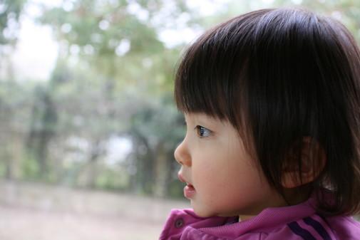 外を眺めるモゾコ
