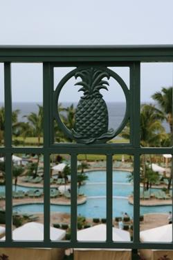 パイナップルの柵