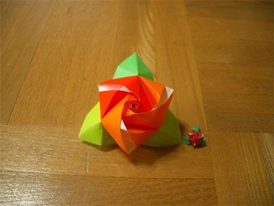 magicrosecube101.jpg