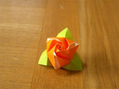 magicrosecube251.jpg