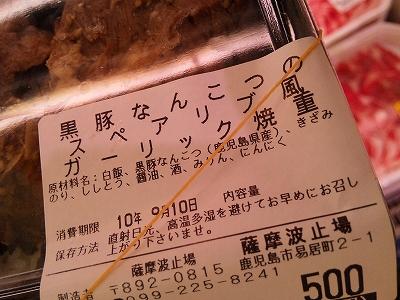 SH3E0088.jpg
