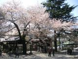 中野新井薬師寺