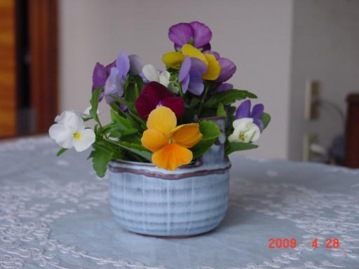 食卓に花を1