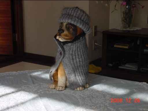犬のドワーストッパー1