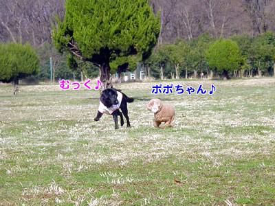 20100303_7.jpg