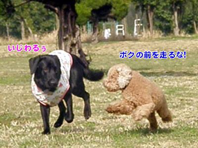 20100303_8.jpg