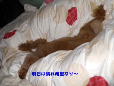20100520_1.jpg