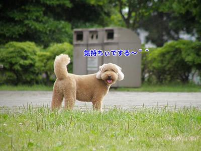 20100527_8.jpg