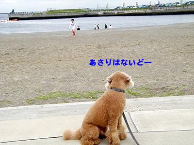 20100529_5.jpg