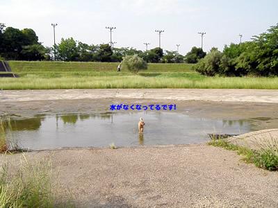 20100612_2.jpg