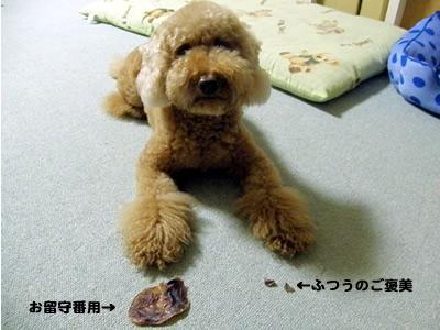 20100629_2.jpg