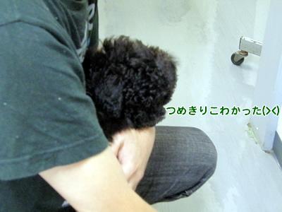 20100707_2.jpg