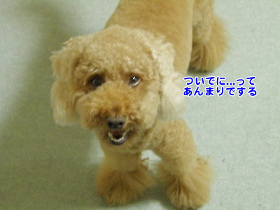 20100707_3.jpg