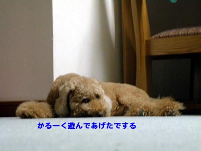 20100712_1.jpg