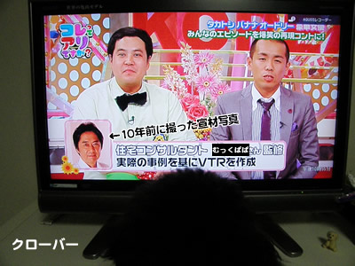 20100803_3.jpg