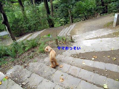 20100822_2.jpg