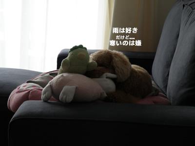20101030_1.jpg