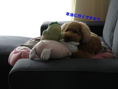 20101030_2.jpg