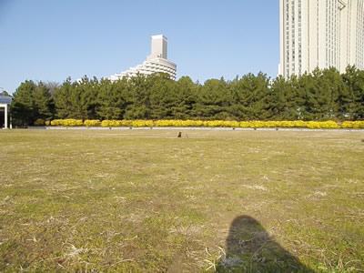20110128_1.jpg