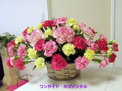 20110331_3.jpg