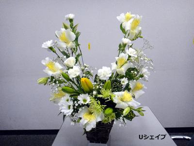 20110517_3.jpg