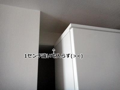 20110517_4.jpg