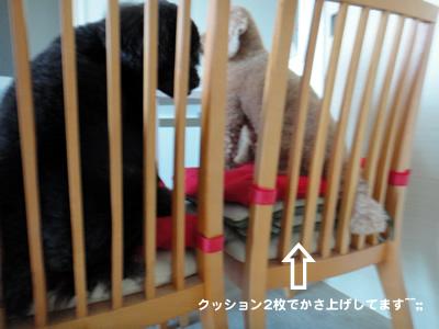 20110717_12.jpg