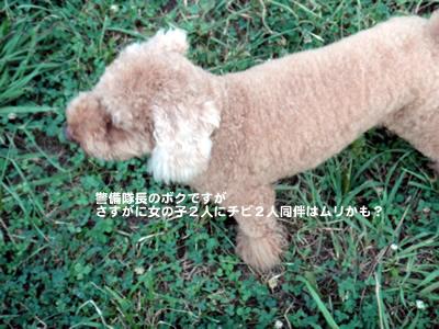 20110723_2.jpg