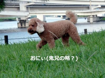 20110912_5.jpg