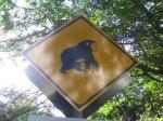 サルに注意