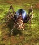 ゴキブリ+クモ÷2