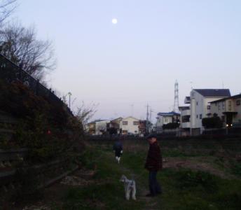 P2080011.jpg