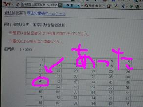 桜さく113