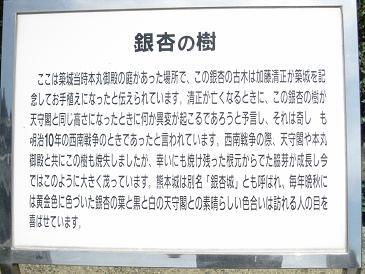 熊本城1111111222
