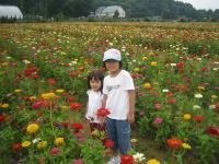 花の都公園前のお花畑