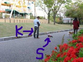 snap_musashityura_200964153535.jpg
