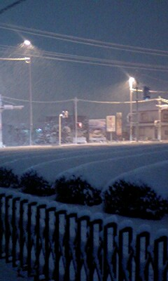 080209雪2