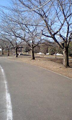 080216日高の公園2