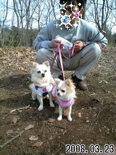 080323智光山公園のプリ・ベリ-0001