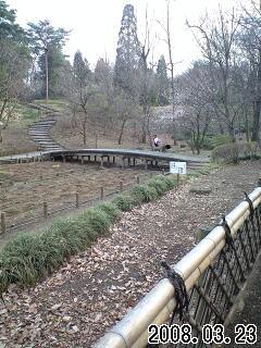 080323智光山公園景色1