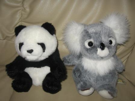 パンダとコアラ