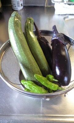 080706収穫野菜